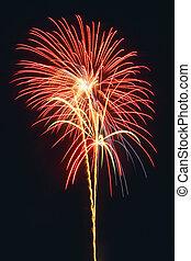 Fireworks light up the night time sky