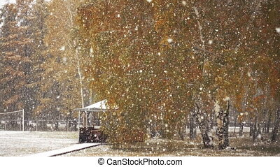First Autumn Snowfall. - First autumn snowfall. Snow is...