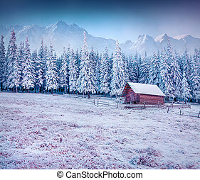 First frost in the mountain village.