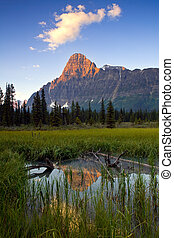 First light on Mount Chephren, Banff, National Park,...