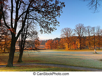 First morning light in the park in October