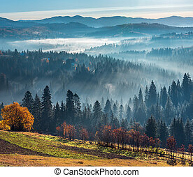 First rays of sun in Carpathians.