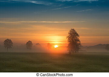 First rays of the sun over foggy field