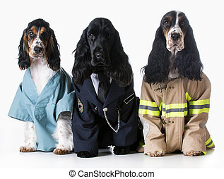 first responders - three dogs wearing doctor, policeman, and...