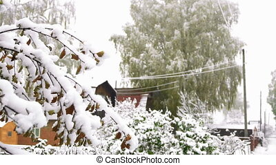 First snow in October - Snowy autumn day in the village