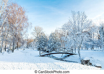 First snow in the city park with trees under fresh snow at sunrise. Bridge on a sunny day in the winter city park.