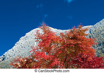 first snow on the mountains in autumn