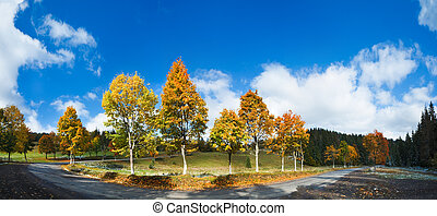 First winter snow and autumn colorful trees near country...