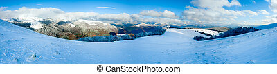 First winter snow and mountain beech forest - October...