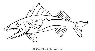 fisch- auge, wand