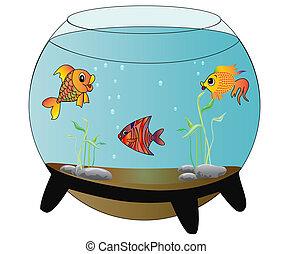 fische, aquarium, fröhlich, isoliert