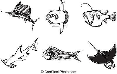 fische, gruppe