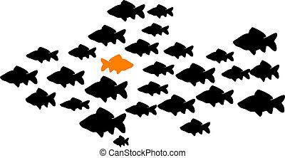 fischen schule