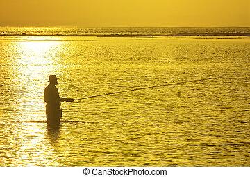 fischer, silhouette