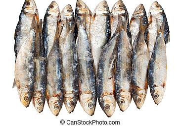 fish, αόρ. του dry , απομονωμένος
