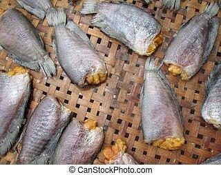fish, αόρ. του dry