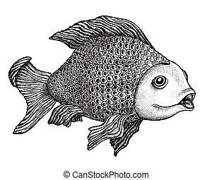 fish, ζωγραφική