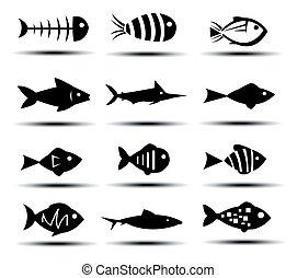 fish, ベクトル, セット, イラスト, アイコン