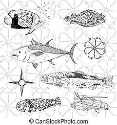 fish, 世界