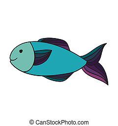 fish, 図画