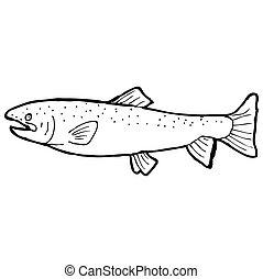 fish, 白, 黒, 図画, 漫画