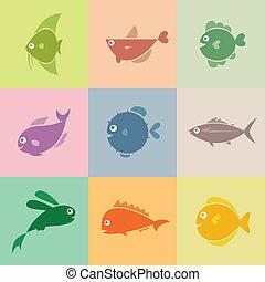 fish, 矢量, 集合, 圖象
