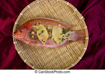 fish., 赤 タイ