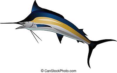 fish, 馬林魚