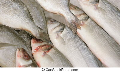 fish, 식료품점