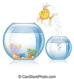Fish and aquarium - Lonely goldfish jumping to other...