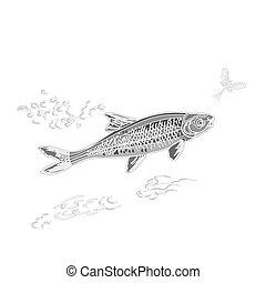 Fish and ephemera as vintage engraved vector