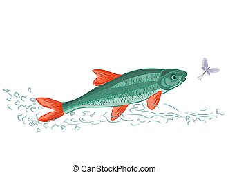Fish and ephemera vector illustration