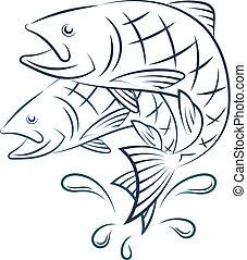 Fish and water splashes