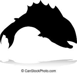 fish, animale, silhouette