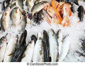 Fish on ice at Mahane Yehuda, famous market in Jerusalem