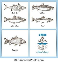 fish, banner., set., temlate, 手, ベクトル, 引かれる, 刻まれる, シーフード, design.
