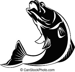 fish, blanc, sauter, retro, isolé, barramundi, haut, noir