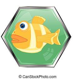 fish, bouton