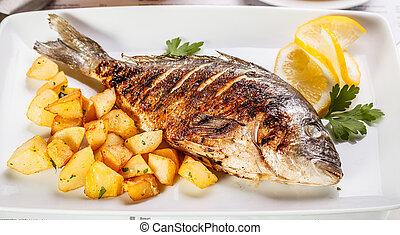 fish, bream