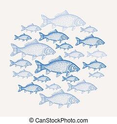 fish, carpe, illustration, main, arrière-plan., vecteur, dessiné, fruits mer