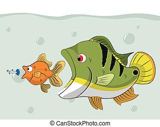 Fish Chain Food - fish chain food in the pond. Bigger fish...