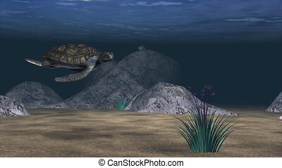 3d Animation of the bottom of the sea created in High definition.