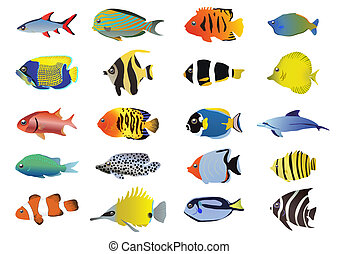 fish-collection - Set of tropical fishes, vector...