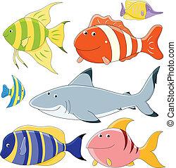 fish, collection, vecteur