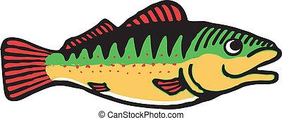 Fish - Colorful fish