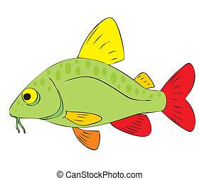 fish, colorful, sea, lake, fishing, aquarium, lake