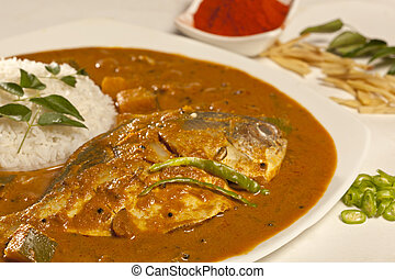 Fish curry with rice from India