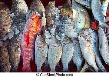 fish, dále, obchod, čelit