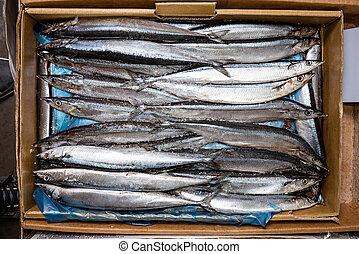 fish, dále, ta, čelit, do, ta, supermarket