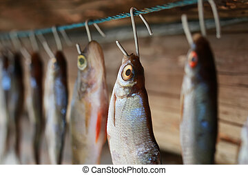 fish drying on rope
